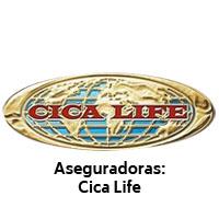 Cica life